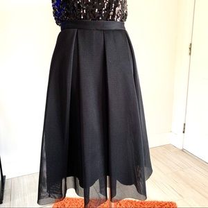 Soprano A-Line Pleated Black Tulle Skirt
